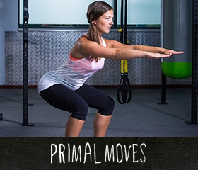 Primal Moves workouts